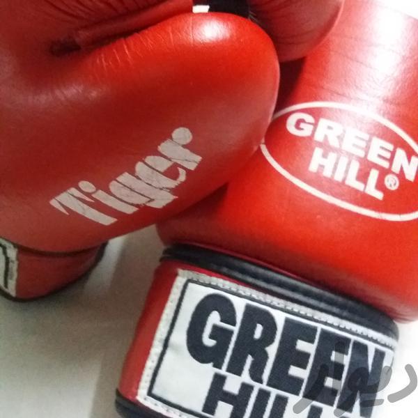 دستکش بوکس حرفهای تجهیزات ورزشی بروجرد دیوار