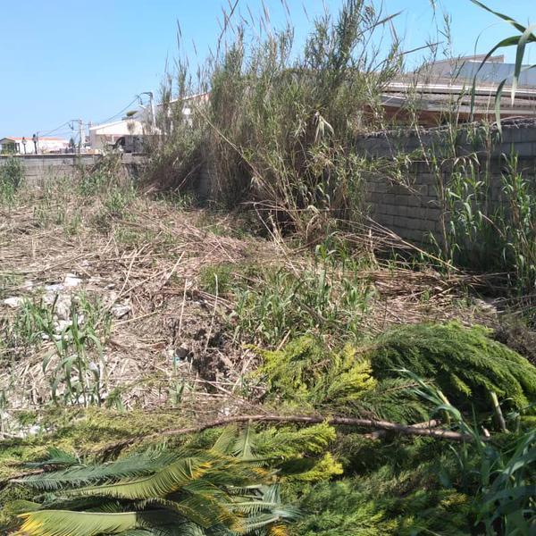 فروش زمین ۳۱۰متری در محموداباد|زمین و کلنگی|بابلسر|دیوار