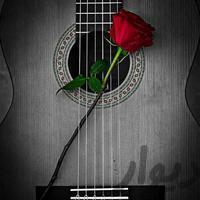 آموزش تخصصی گیتار،توسط سیدمسعودموسوی